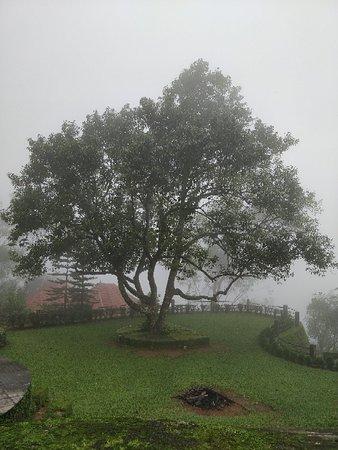 Ponmudi, الهند: IMG_20180712_123703_large.jpg
