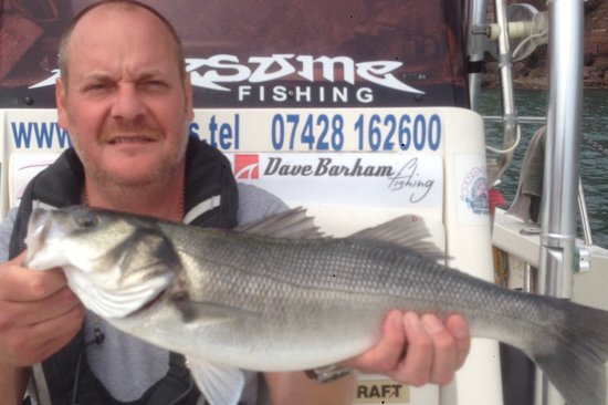 Dale, UK: Bass on the fly