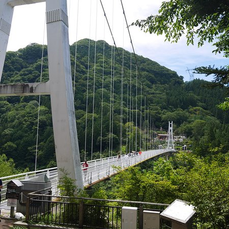 Ueno Sky Bridge: photo3.jpg