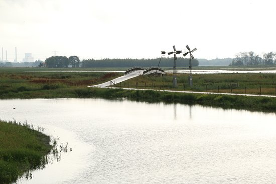 National Park De Biesbosch, The Netherlands: Biesbosch 2