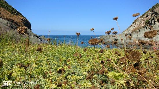Bosa, Italy: Cala e Moro percorso