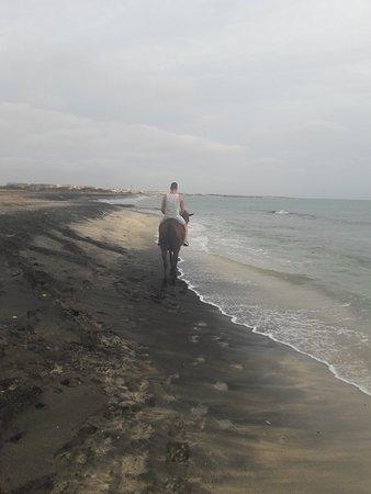 萨尔岛全日游之旅照片