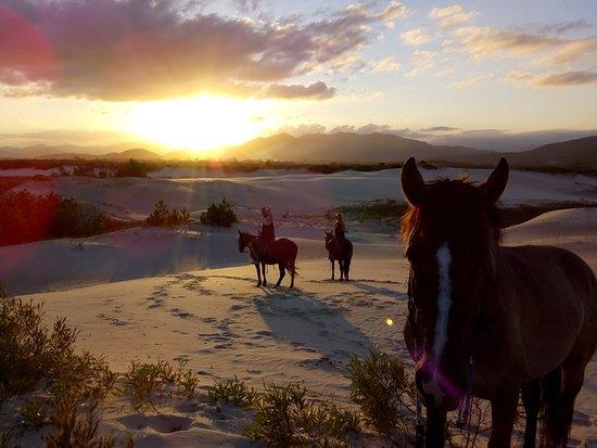 Imbituba, SC: Cavalgadas para Dunas, Praias, Montanhas e lugares lidos com maravilhosas paisagens