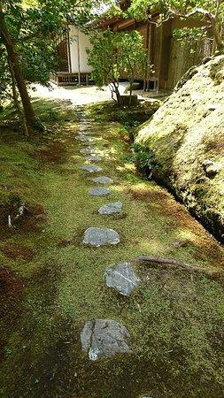 Saihoji Temple: DSC_1383_large.jpg