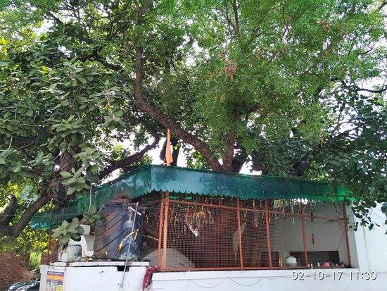 Gurudwara Raipur Rani