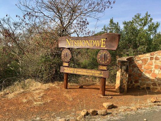 Ithala Game Reserve Foto