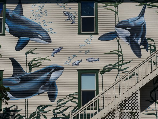 The Whale Museum: outside the museum ( its in a converted old house )