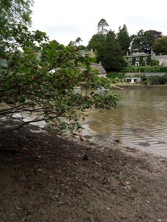 Dart River 사진