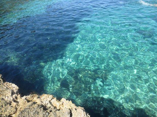 Giannutri Island, Italia: Cala Maestra
