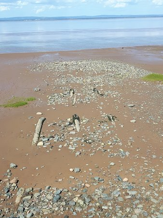 The remains of the old wharf at Anthony Provincial Park