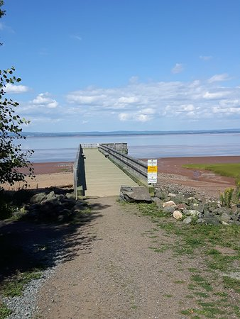 The boardwalk at Anthony Provincial Park