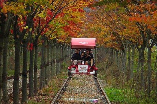 Reserva de descuento Gapyeong Rail...