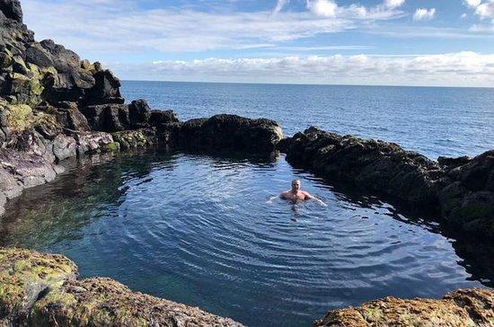 Península de Reykjanes guiada com um...