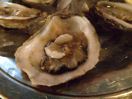 Bill's Seafood Restaurant: Fresh Oysters