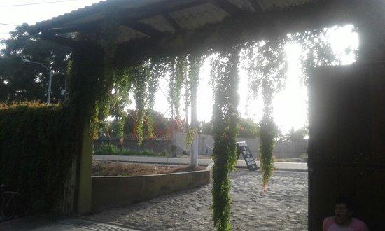 Sipacate, Guatemala: Entrada de hotel la iguana dorada