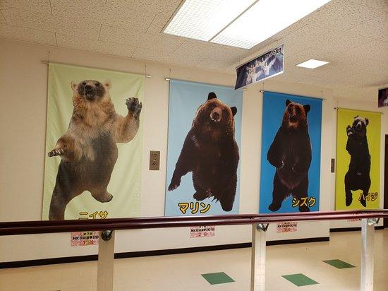 Noboribetsu Bear Park: 20180731_120933_large.jpg