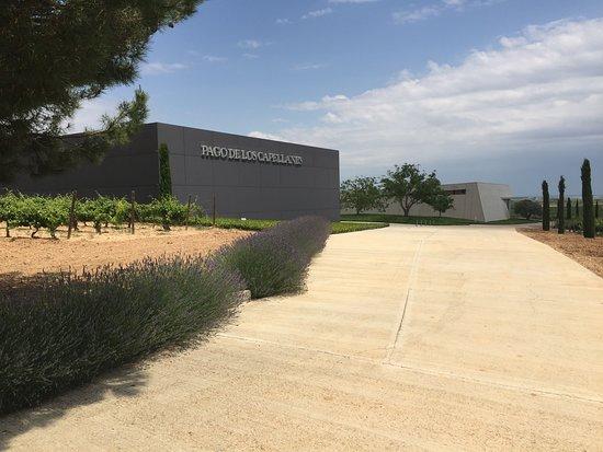 Pedrosa de Duero, Španělsko: Neue Gebäude der Bodega