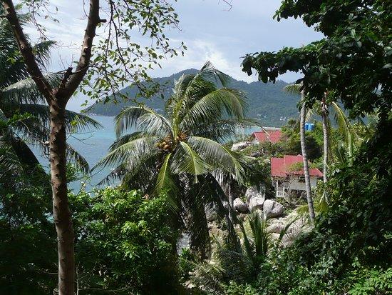 Charm Churee Villa: il paesaggio