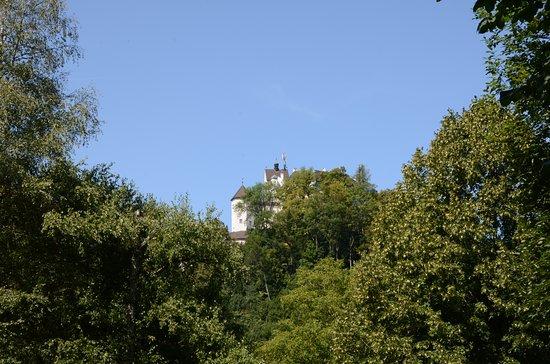Schloss Hohenaschau: Zamek Hohenaschau