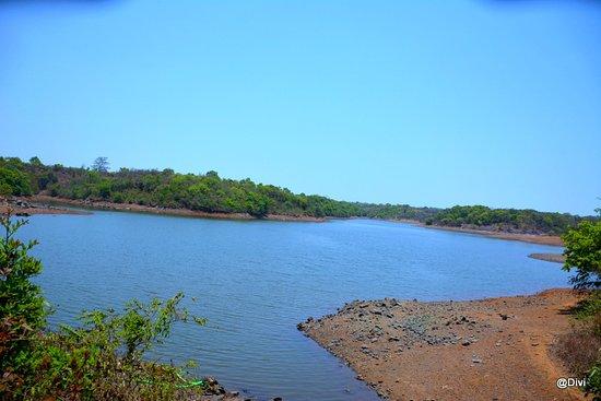 Saltar Dam