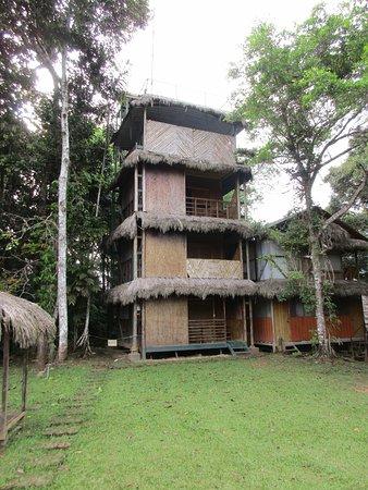 Cuyabeno Lodge: Turm der Superiorzimmer