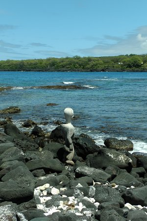 Honaunau, Havaí: One of the locals!
