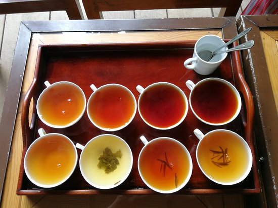 Storefield Tea Factory