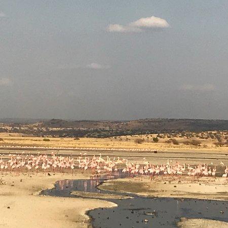 Magadi, Kenya: photo2.jpg