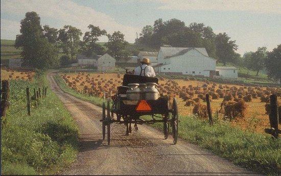 Amish Heartland Tours Image