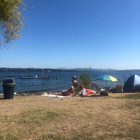 Madison Beach (Seattle) - 2019 All You Need to Know BEFORE