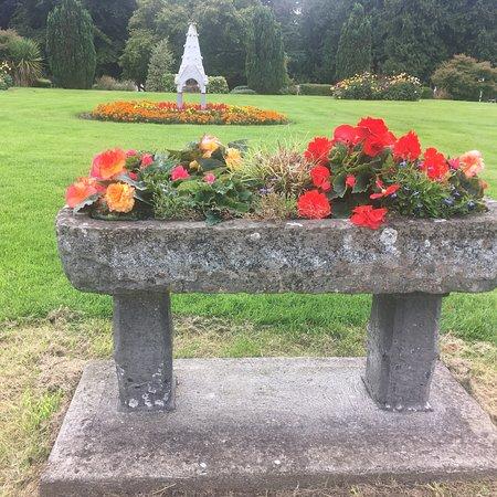 Multyfarnham, Irlanda: photo0.jpg