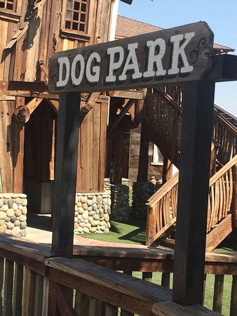 Kettleman City, Californie : dog park