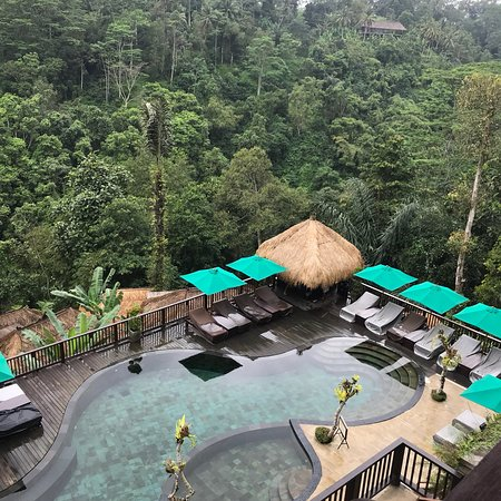 Nandini Bali Jungle Resort & Spa : photo0.jpg