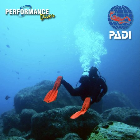 Takapuna, Nya Zeeland: Join us at Performance Diver for all your Scuba Diving trips, events and courses!