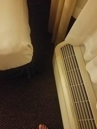 Cambria Hotel Rapid City: TA_IMG_20180902_215327_large.jpg