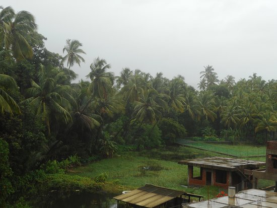 Anant Villa: View from the roof