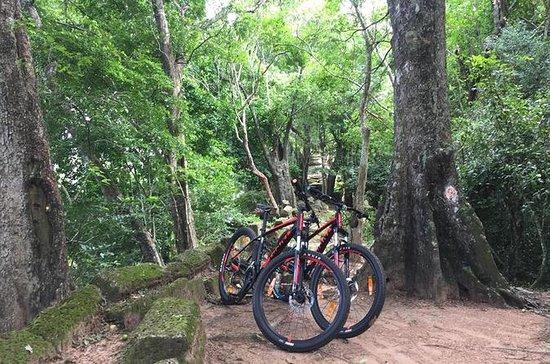 Siem Reap Bike-Twilight i små kretsar ...