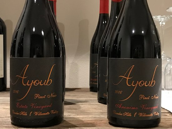 Dundee, OR: Ayoub Wines