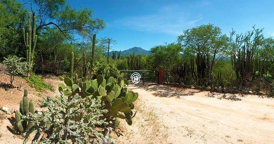 San Bartolo, Mexico: Rancho Laventa