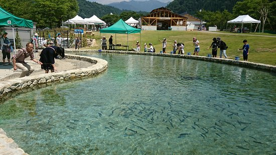 Seiryu Nagara River Ayu Park