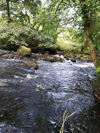 Frongoch, UK : Stream running through the site