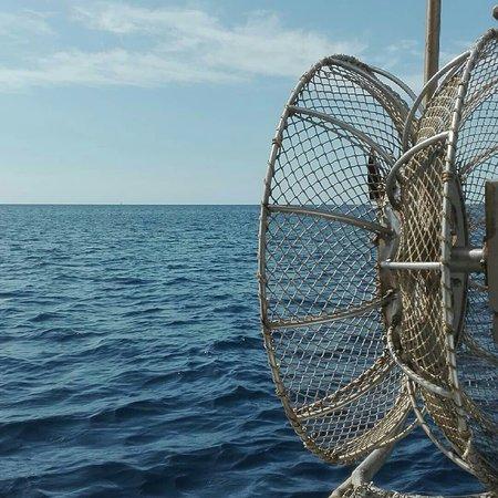 Pescaturismo Teulada Lucia Madre - Gita Privata