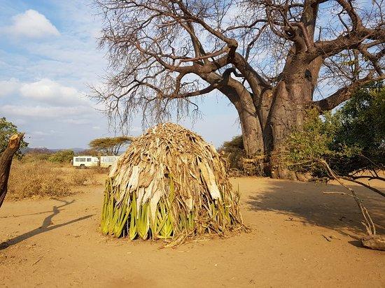 Karatu, Τανζανία: 20180801_083139_large.jpg
