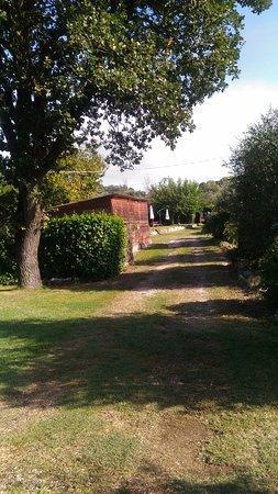 Penna in Teverina, Italie: giardino agriturismo