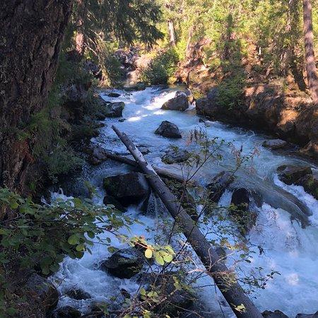 Rogue River: photo0.jpg