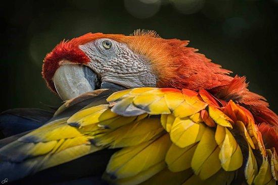 Simon Bolivar Parque Zoologico  y Jardin Botanico Nacional