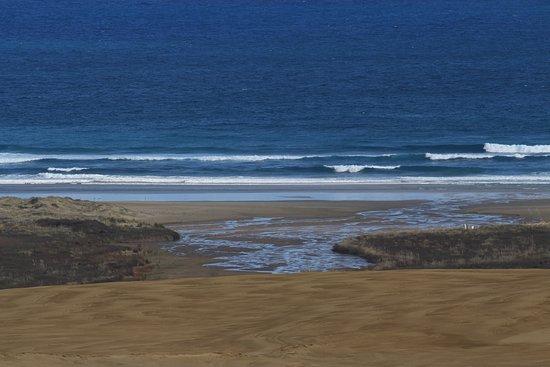 Pukenui, New Zealand: Vista sulla spiaggia