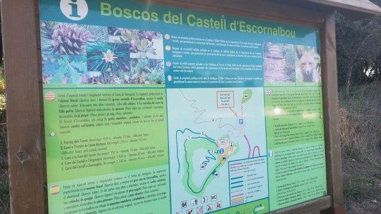 Castell Monestir d'Escornalbou: mapa