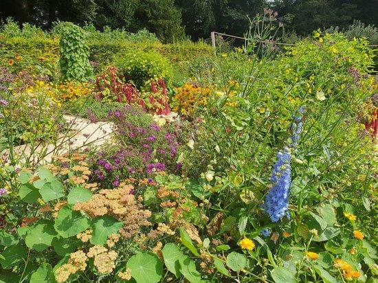 Painswick Rococo Garden: 20180903_134953_large.jpg