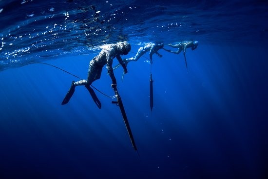 Punta de Mita, เม็กซิโก: Spearfishing - Blue Water hunting